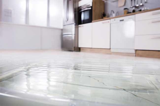 Water Damage Restoration Can Prevent Mold